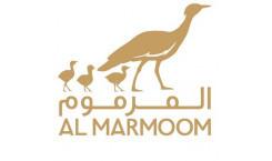 Al Marmoom Reserve